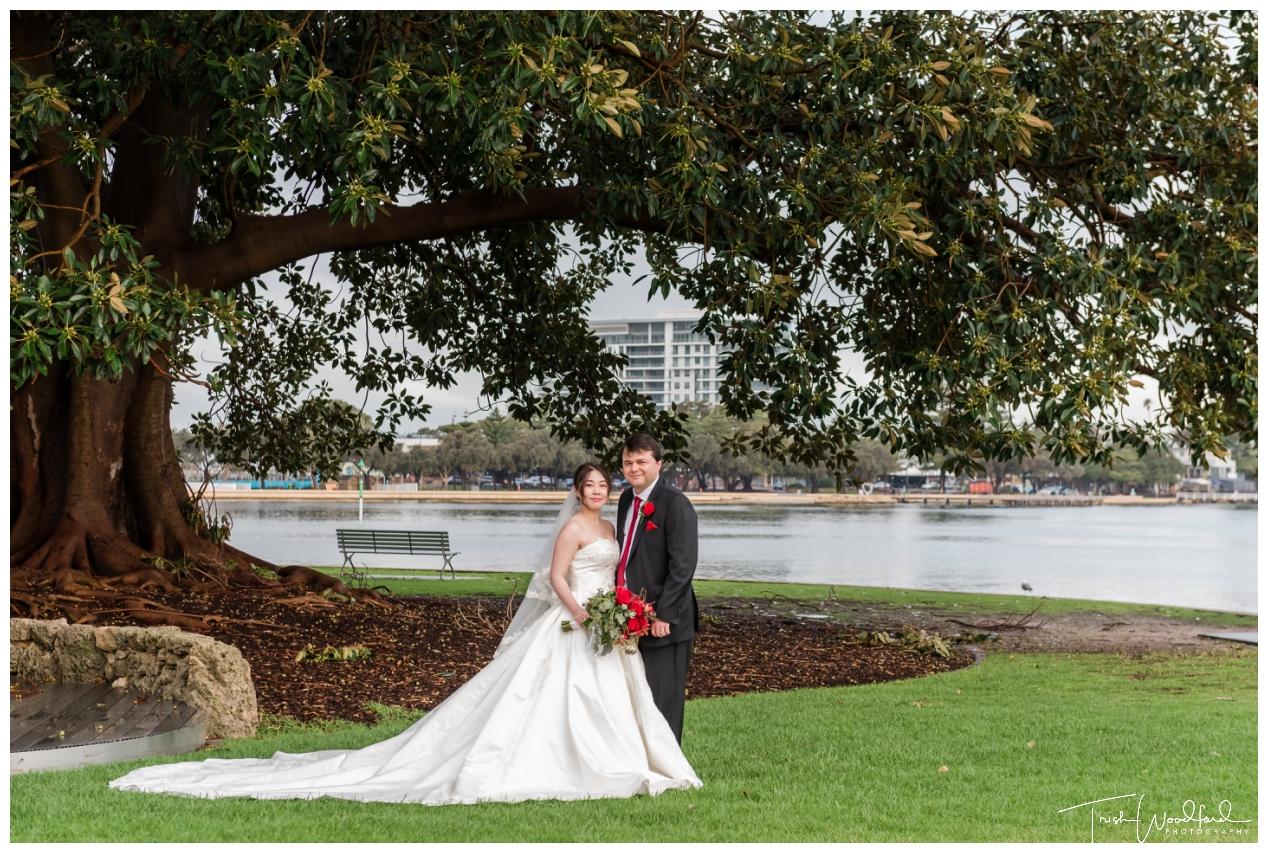 Old Fig Tree Mandurah Wedding Photo