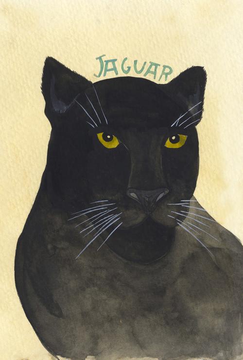 jaguar_b.jpg