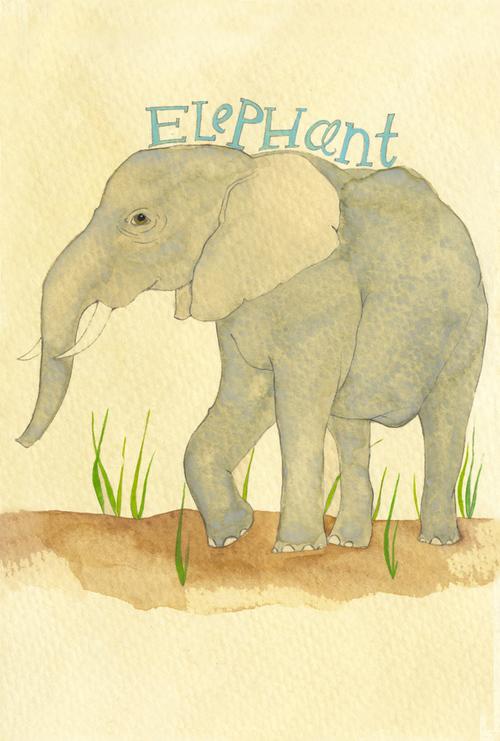 elephant_b.jpg