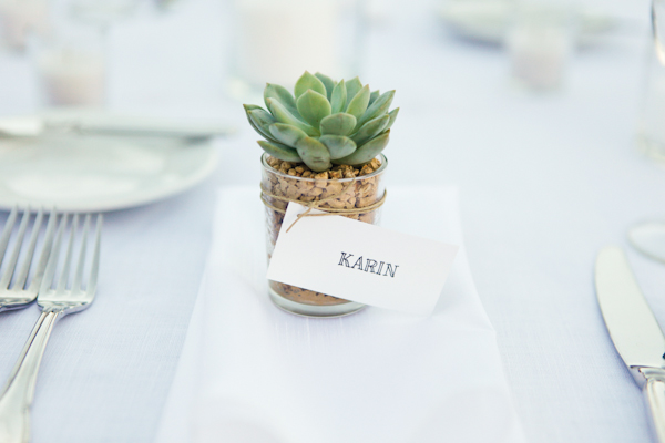 Succulent-Wedding-Favors-1.jpg