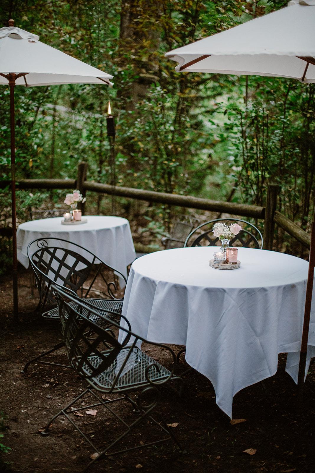 SarahMattozziPhotography-NicoleChris-GlenGardens-Reception-8.jpg