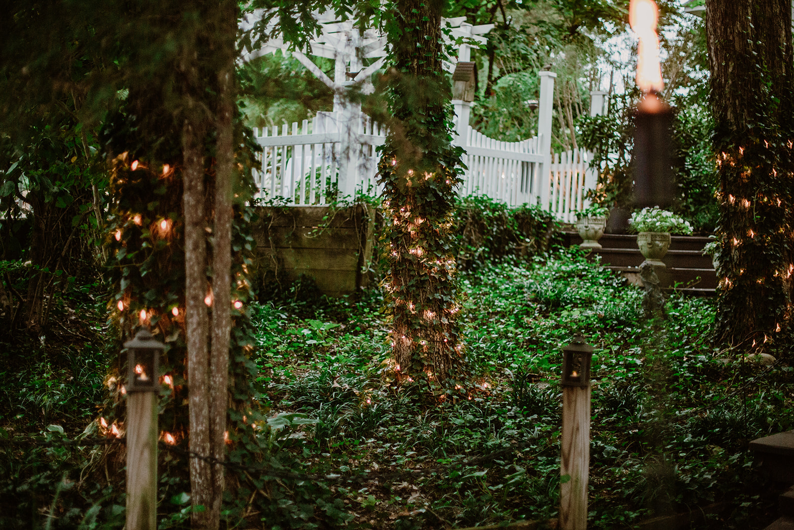 SarahMattozziPhotography-NicoleChris-GlenGardens-Reception-7.jpg