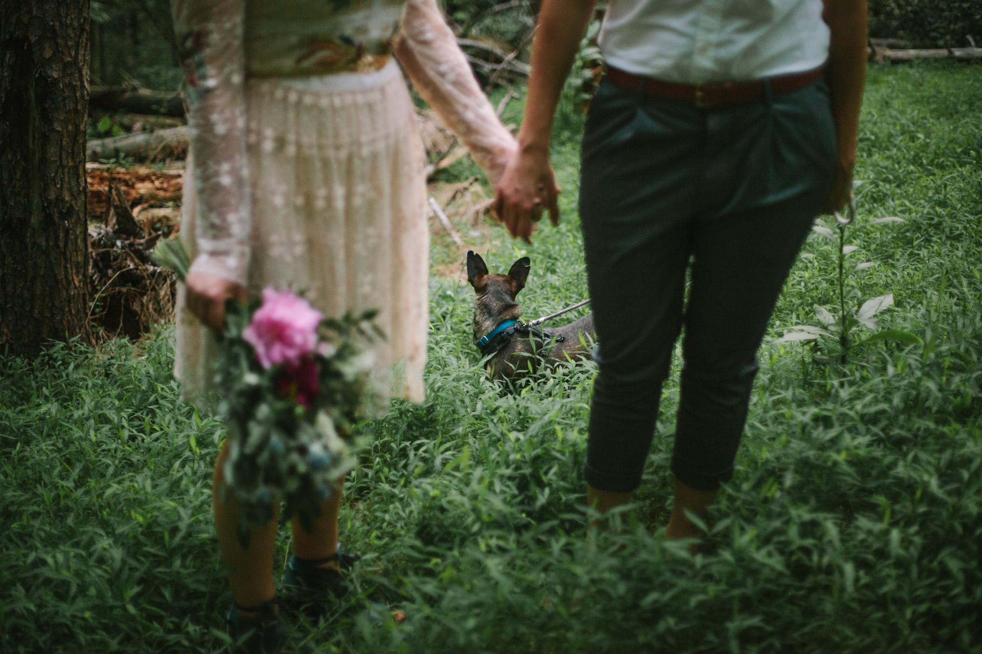 SarahMattozziPhotography-Elopement-CharlottesvilleVA-32.jpg