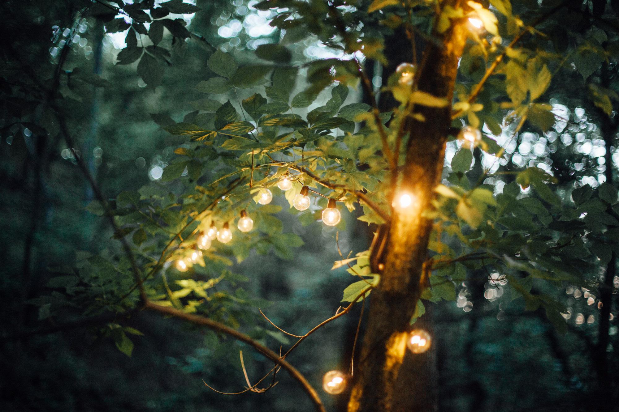SarahMattozziPhotography-Elopement-CharlottesvilleVA-35.jpg