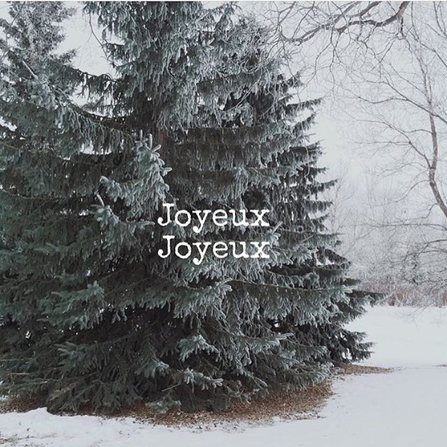 Hoping today is cozy and relaxing for you and your dearest, wherever you are. Wishing you a Merry Christmas, Joyeux Noel, and Happiest of Holidays! Merry everything ❤️. #joyeuxfetes #slowliving #slowchristmas #explorecanada #livedeep #welltravelled #vsco #vscocam #getoutside #simplepleasures #shareyournorth #igersvancouver #exploress #northwestisbest #thankyoucanada #wanderfolk #mytinystlas #exploringtheglobe #neverstopexploring #thegreatoutdoors #adventureiscalling #livingyxe #exploreYXE @visitsaskatoon #ExploreSask @tourismsask