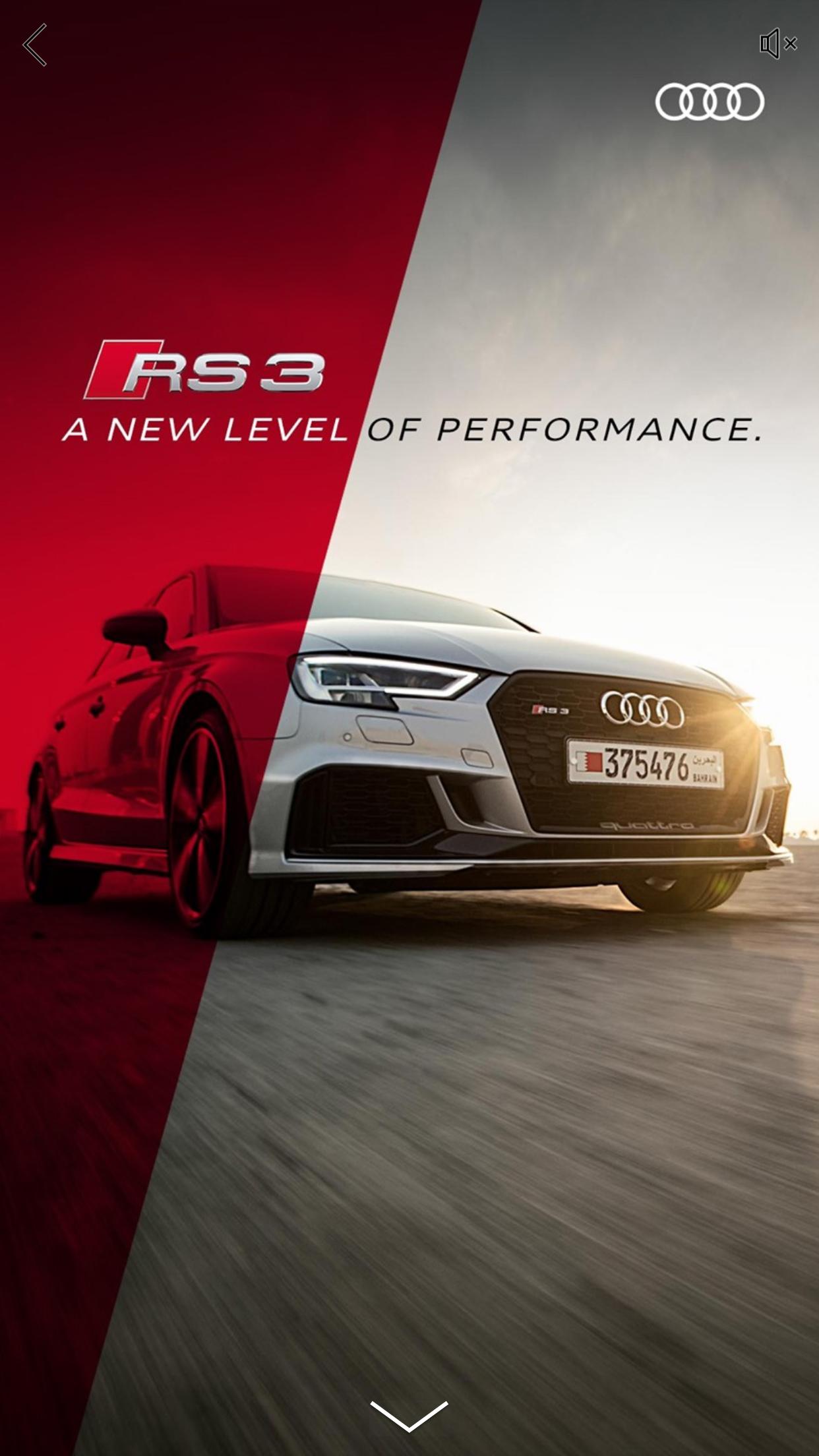 Audi rs 2.jpg