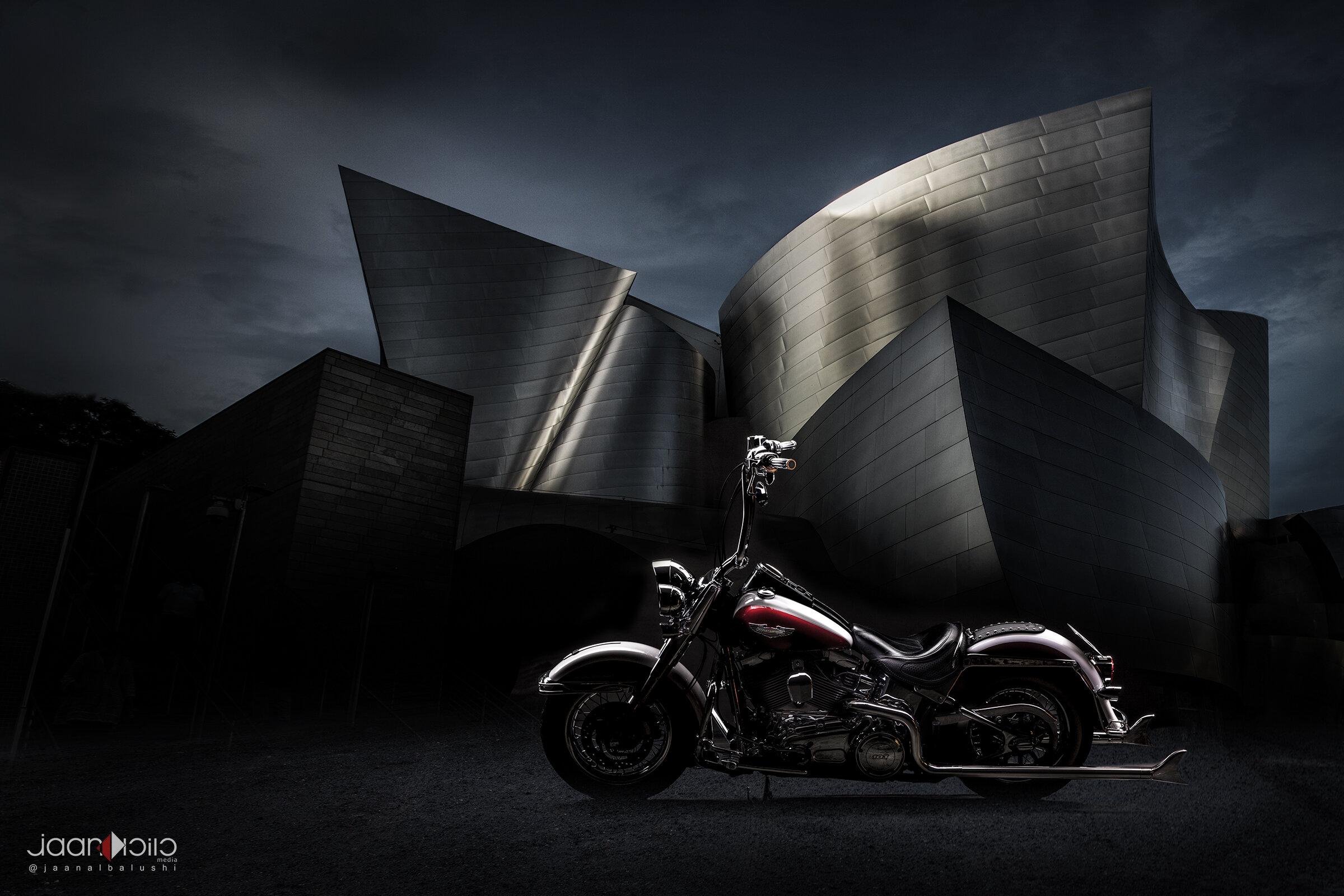 Harley in LA.jpg