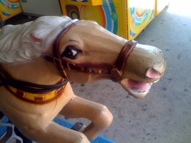 Wild Coney Island Horse    Equus lunaparkus