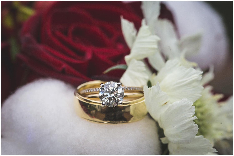 Fearrington Barn Christmas Wedding-0018.jpg