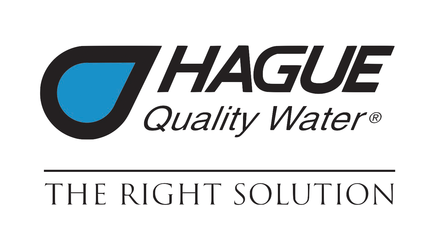 hague logo- the right solution.png
