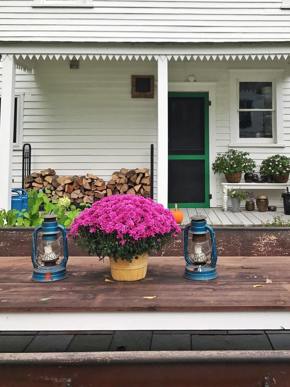 Farmhouse back porch.JPG