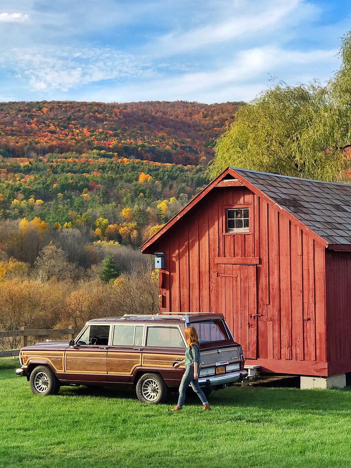 hill farm wagoneer.JPG