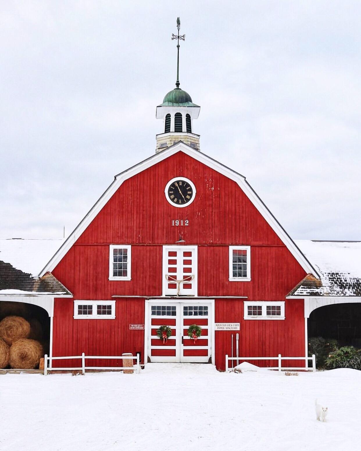 Inn at Mountain View Farm