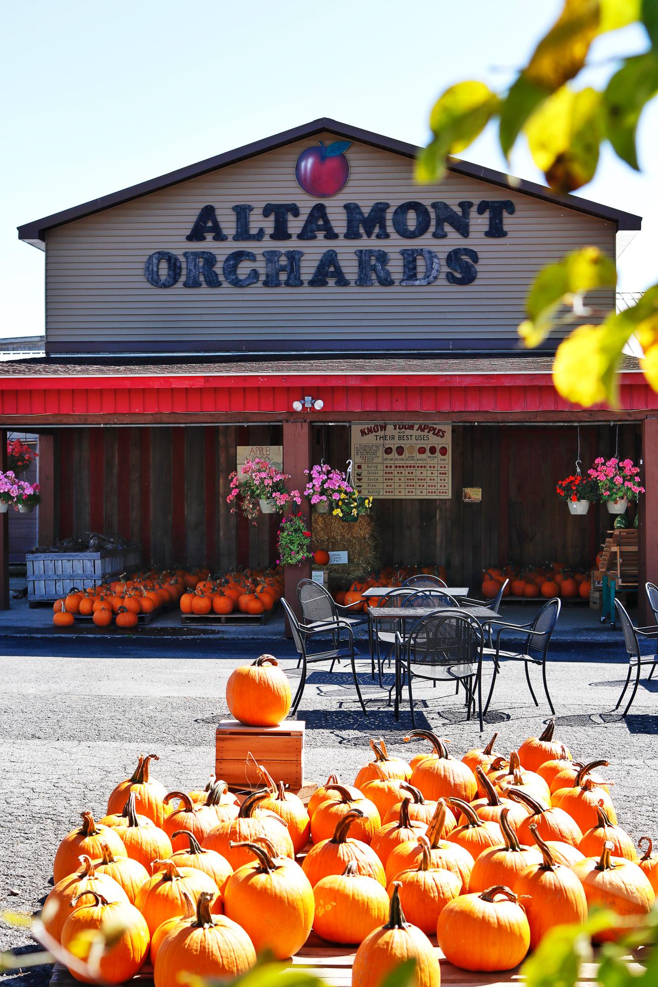 Albany - Altamont Orchard.jpg