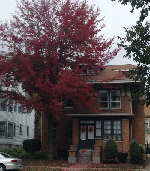 A typical Buffalo Fall house in all it's glory.