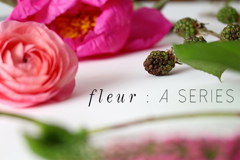 fleur : a series   leigh clair