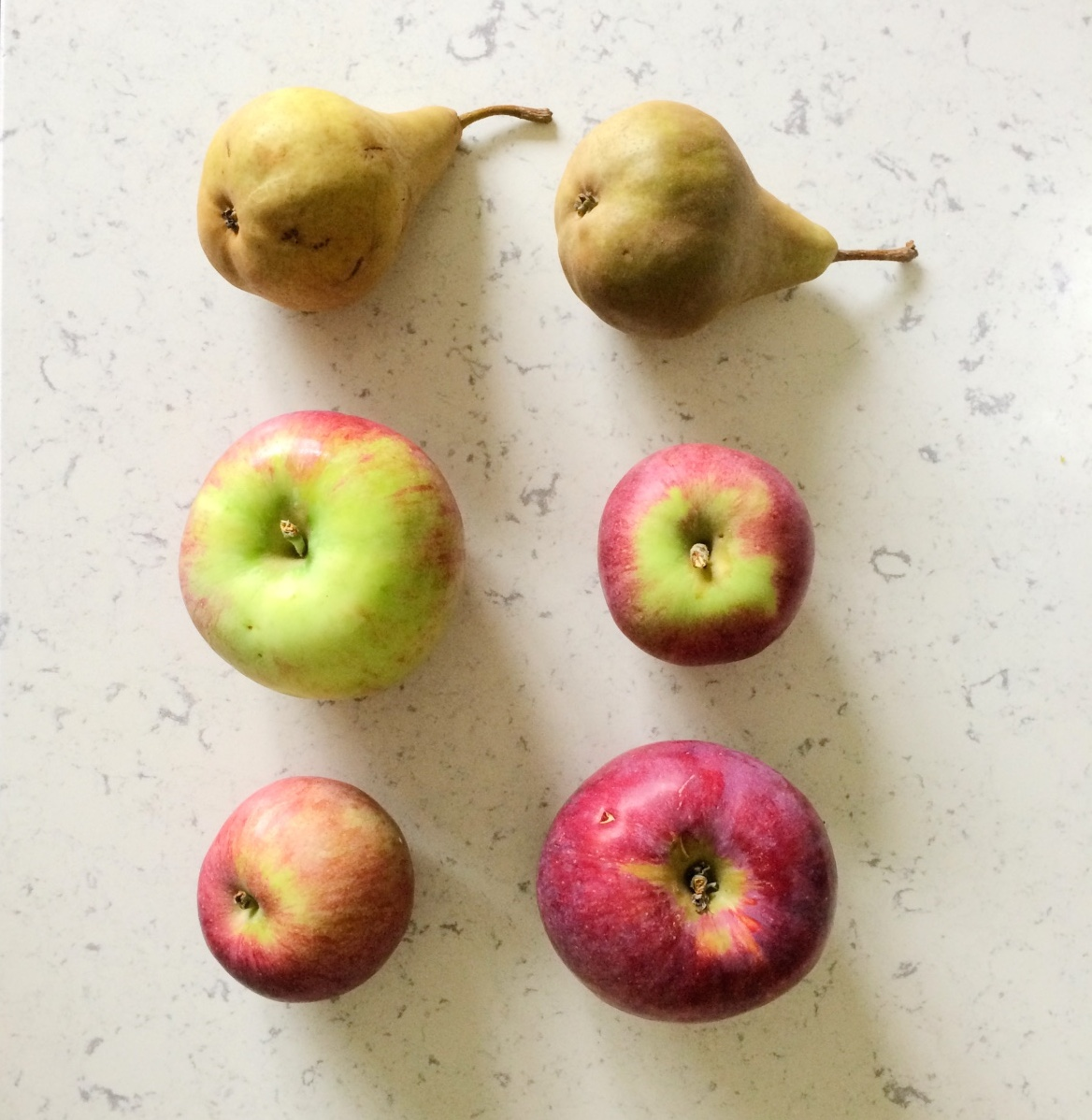 pears and apples come together to make the best pie