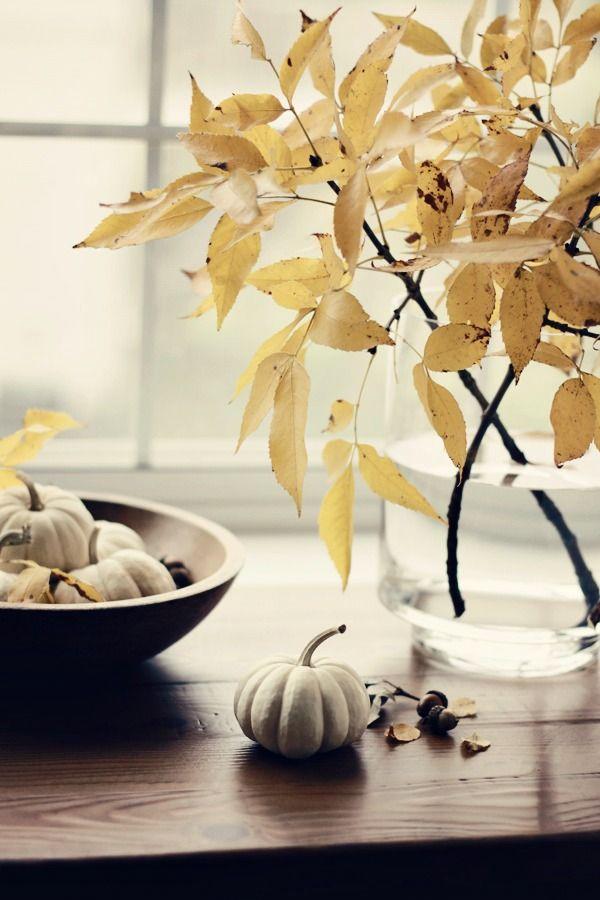 an autumn to do list