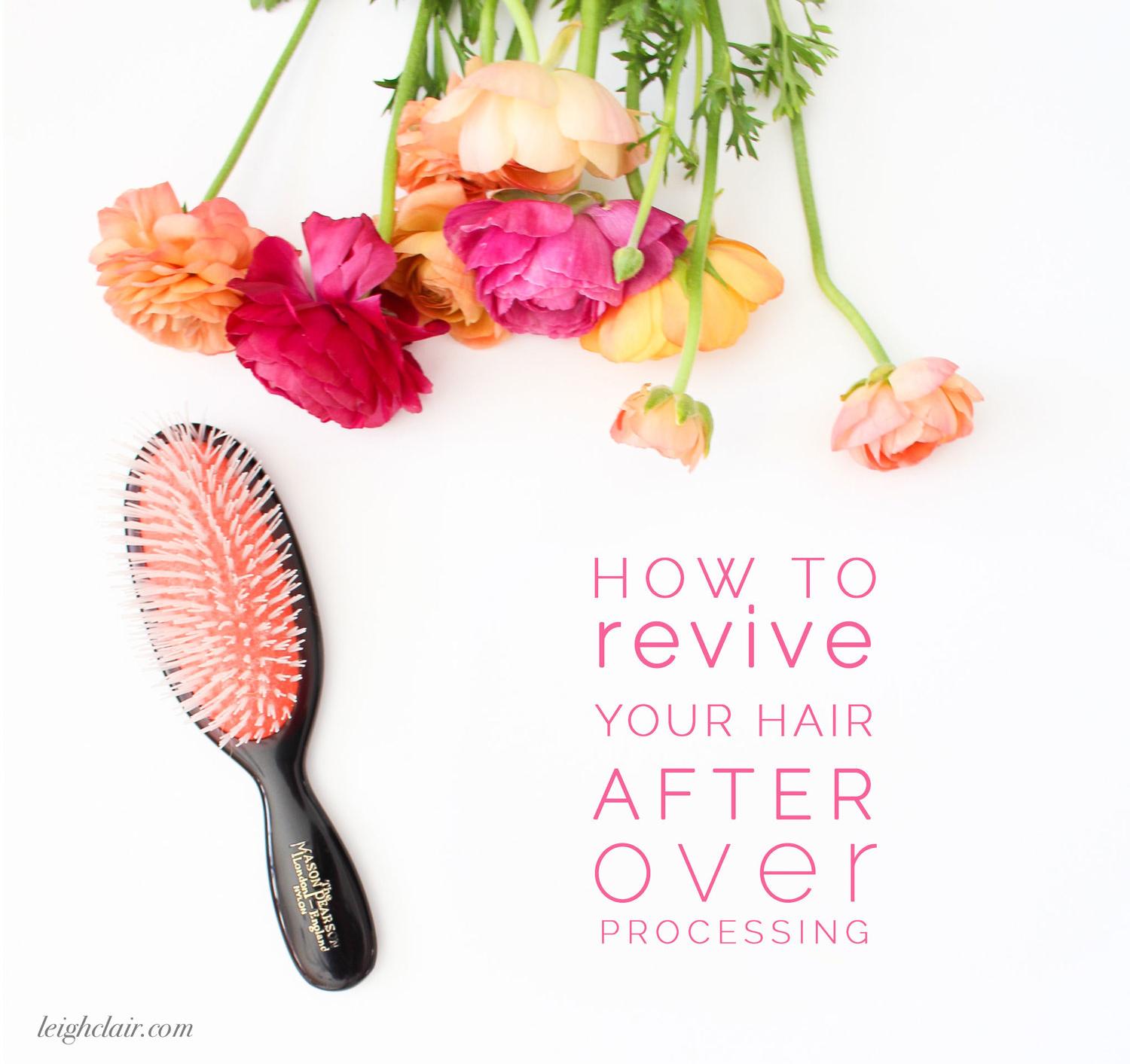 How To Revive Your Hair: A 3 Step Plan to Healthy Hair - Leigh Clair