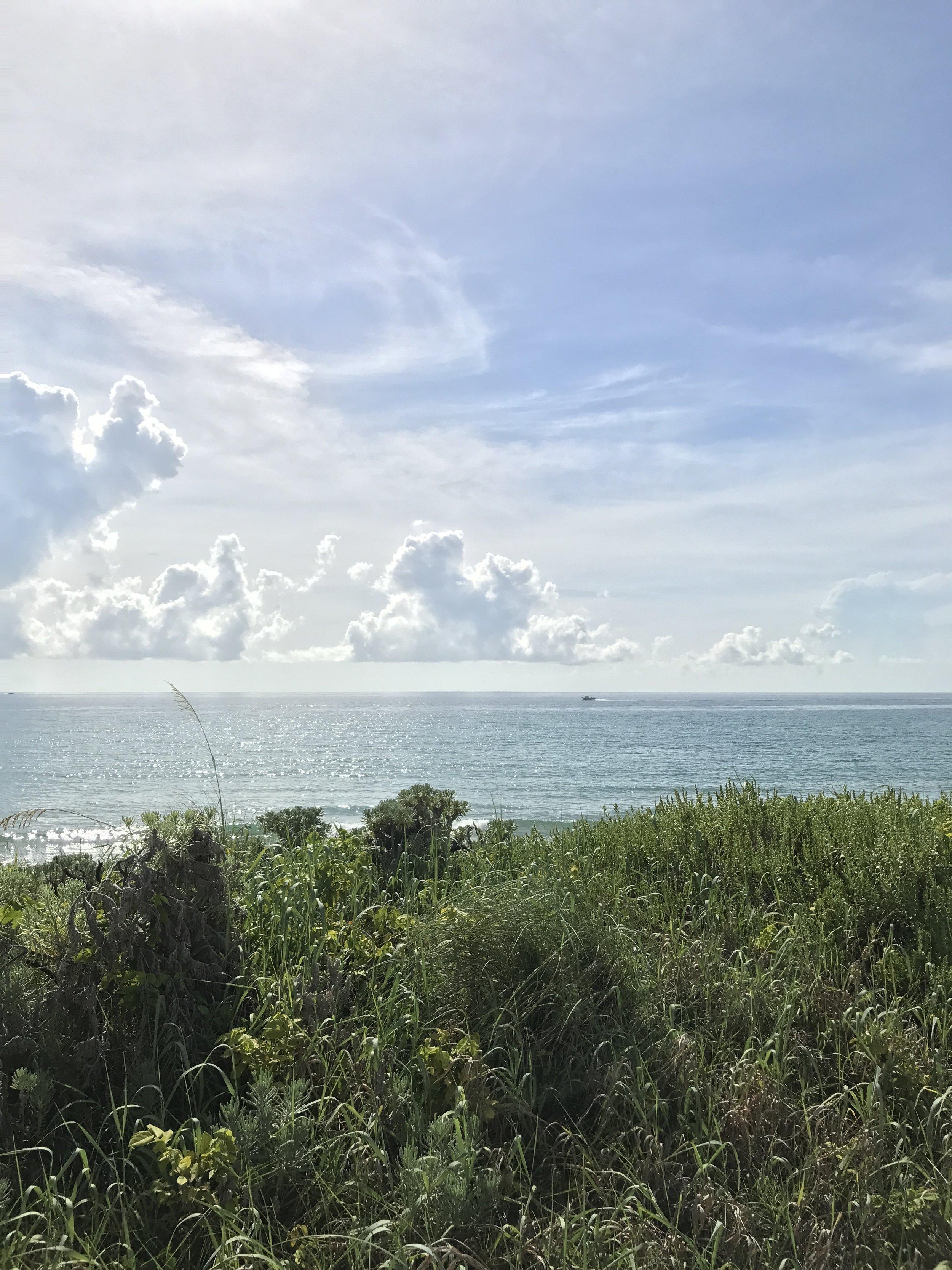 Walking along Ocean Blvd in Palm Beach.