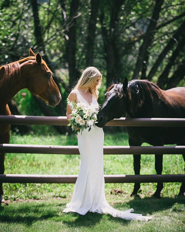 """""""Kelsey brings so much joy to my life. She can make the sun shine on the stormiest day."""" -Reed ⠀⠀⠀⠀⠀⠀⠀⠀⠀ To see this smile on beautiful Kelsey's face when these horses appeared unexpectedly was all I could have wished for on her wedding day!  And let me tell you a little bit why.... ⠀⠀⠀⠀⠀⠀⠀⠀⠀ I have this belief that in the unexpected are where the most magical things happen. ⠀⠀⠀⠀⠀⠀⠀⠀⠀ Kelsey had at least half of her wedding plans changed through the course of the year prior, including lightning & rain storms on her wedding day & an entire dream wedding venue changed just months prior.  This smile is the smile I saw on her face despite, and I watched her transform into something beautiful despite these circumstances. ⠀⠀⠀⠀⠀⠀⠀⠀⠀ And I think her husband Reed sums this amazing woman up best ♥️ ⠀⠀⠀⠀⠀⠀⠀⠀⠀ So the next time you have all your plans changed, remember that that's when the most magical moments happen ♥️ ⠀⠀⠀⠀⠀⠀⠀⠀⠀ ⠀⠀⠀⠀⠀⠀⠀⠀⠀ ⠀⠀⠀⠀⠀⠀⠀⠀⠀ ⠀⠀⠀⠀⠀⠀⠀⠀⠀ ⠀⠀⠀⠀⠀⠀⠀⠀⠀ Coordinator: @blueheronmontana  Venue: @barwguestranch  Videographer: @ontheflyfilms  Dress: @loversxsociety #FrejaGown @lovelybridesf  Floral: @rosemountain_floral  Desserts: @fleurbakeshop  Music: @mooselakemedia  Makeup: @souciesouciesalon  Catering: @thecuisinemachine  Bar: @stumptownspiritsmt  Rentals: @thepartystoremt @celebraterentals @empress_tents_events @AlpineTipis Photobooth: @406pixphotobooths ⠀⠀⠀⠀⠀⠀ ⠀⠀⠀⠀⠀⠀⠀⠀⠀ ⠀⠀⠀⠀⠀⠀⠀⠀⠀ ⠀⠀⠀⠀⠀⠀⠀⠀⠀ ⠀⠀⠀⠀⠀⠀⠀⠀⠀ ⠀⠀⠀⠀⠀⠀⠀⠀⠀ ⠀⠀⠀⠀⠀⠀⠀⠀⠀ #jennifermooneyweddings #weddingdetails  #brideandgroom #elegantmountainwedding #montanawedding #montana  #elegantwedding #whitefishwedding #whitefish #bigforkmontana #radloveatories #thatsunsettho #rockymtnbride  #brideandgroom #thatsdarling #lovelybride #muchlove_ig #weddingphotographer #heyheyhellomay  #loveauthentic #theknot  #realweddings #weddingdetails #weddingchicks #risingtidesociety #loveintentionally #featuremeoncewed #stylemepretty"""