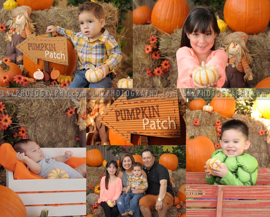 Pumpkin-Patch-Pics.png