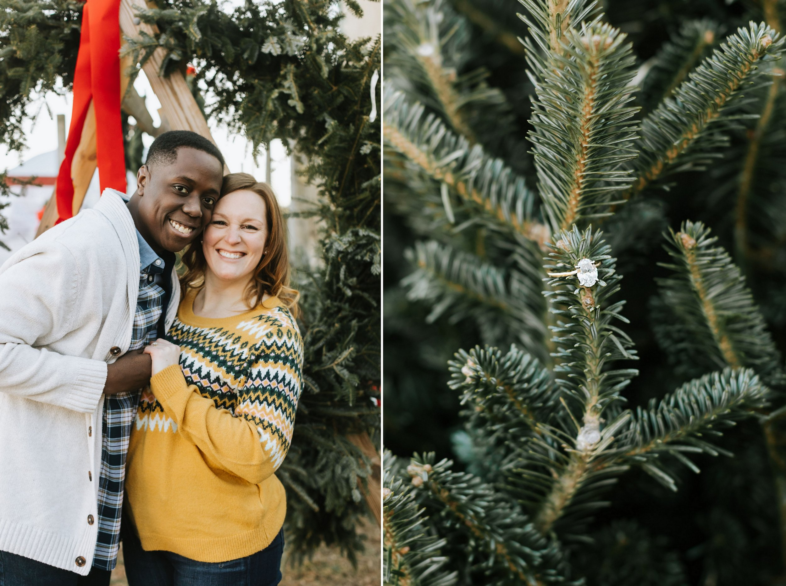 Winter-Tree-Farm-Engagement-Boston-12.jpg