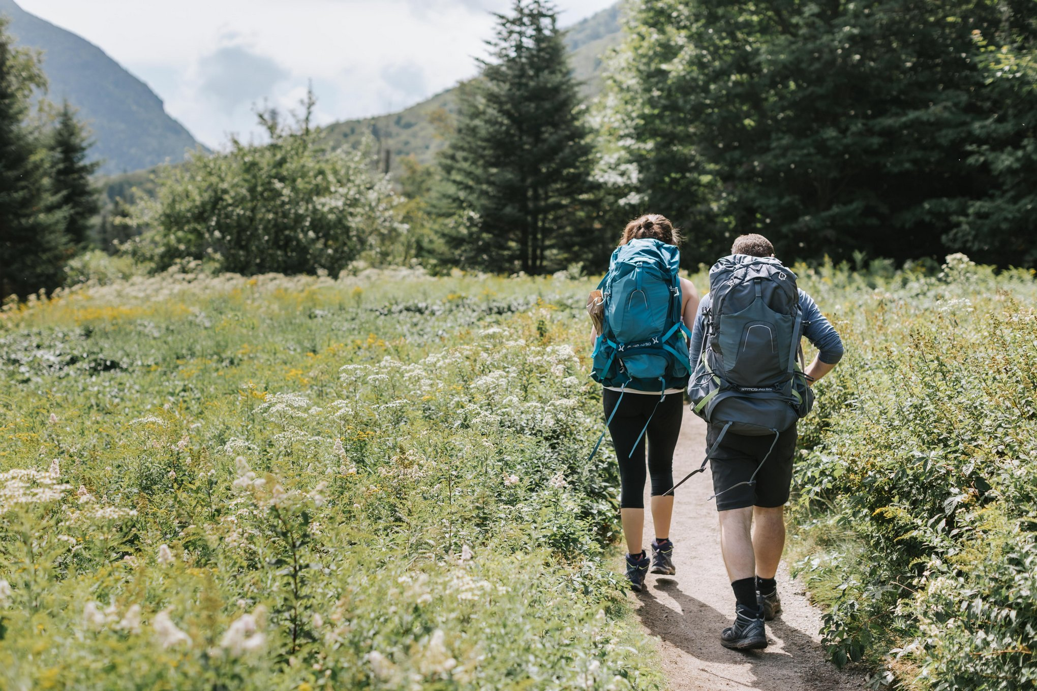 Mount-Willard-White-Mountains-Engagement-Elopement-Lena-Mirisola-9.JPG