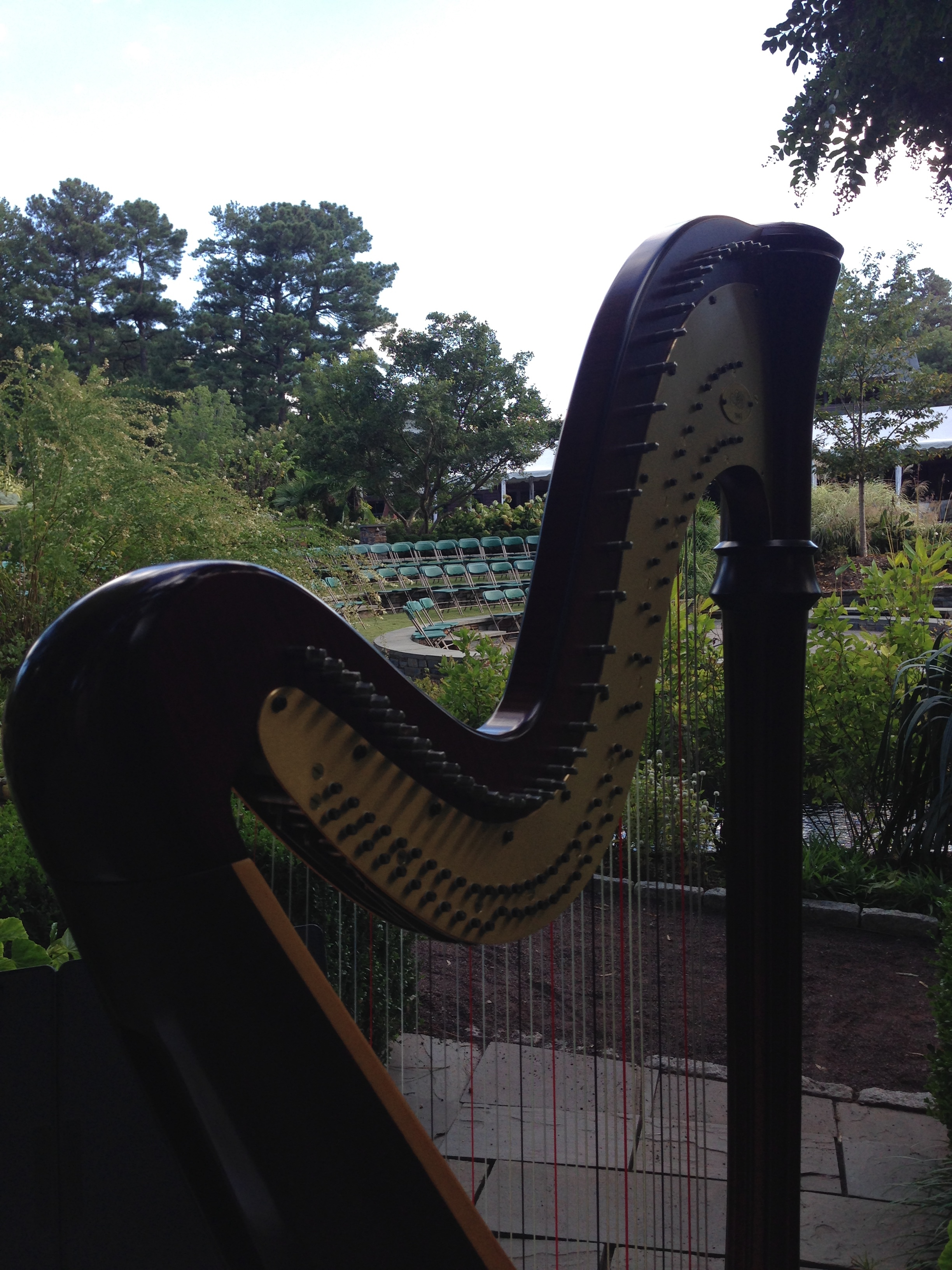 Cary Wedding Harpist