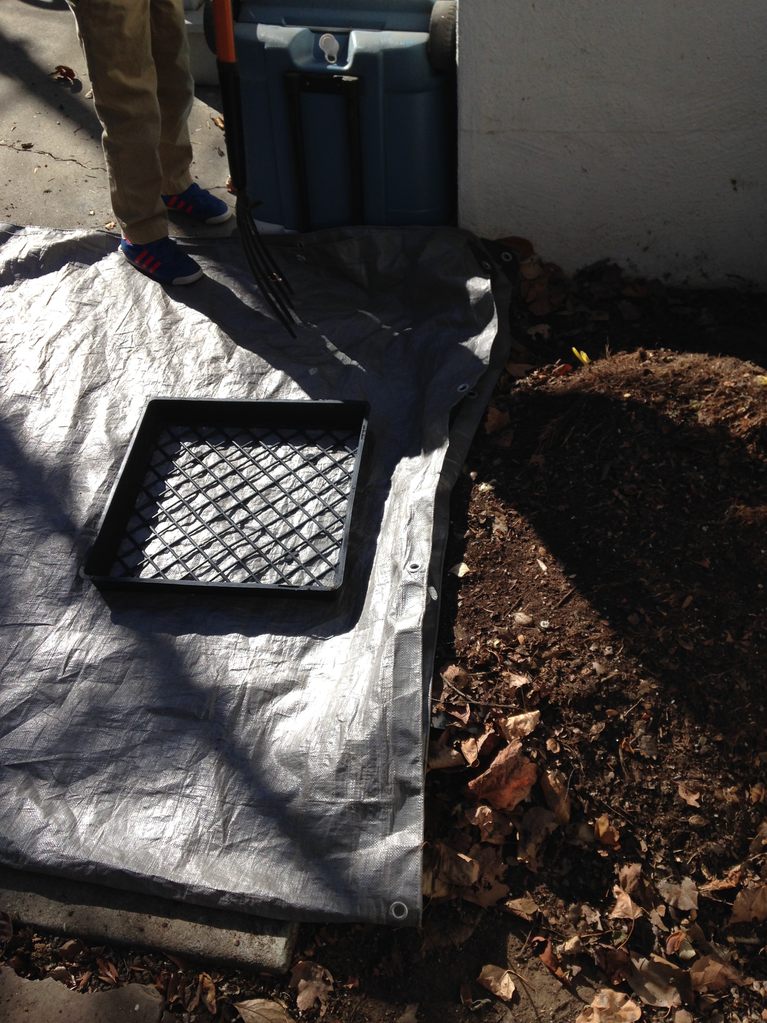 The compost is on the right, the seedling tray I used as a screen on the tarp. Ready to go!