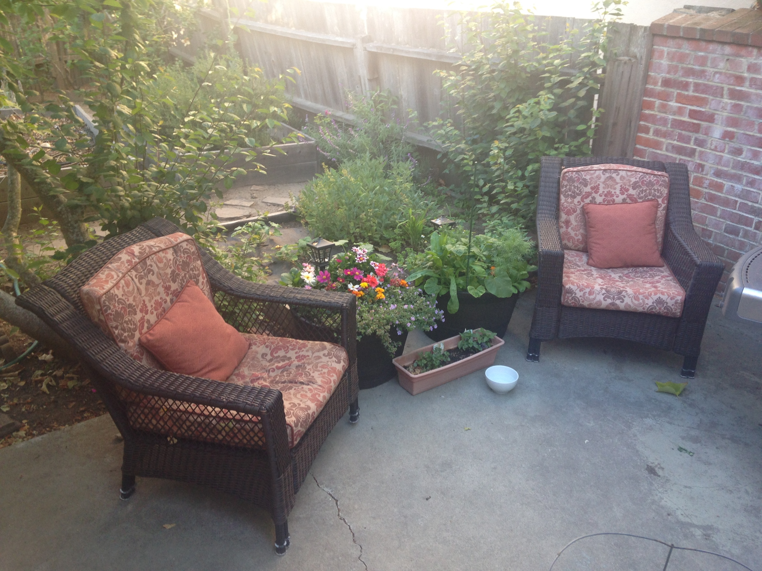 My garden oasis.