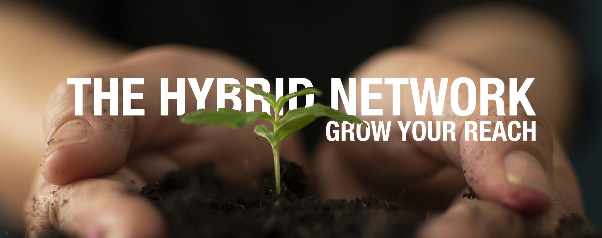 THE HYBRID NETWORK
