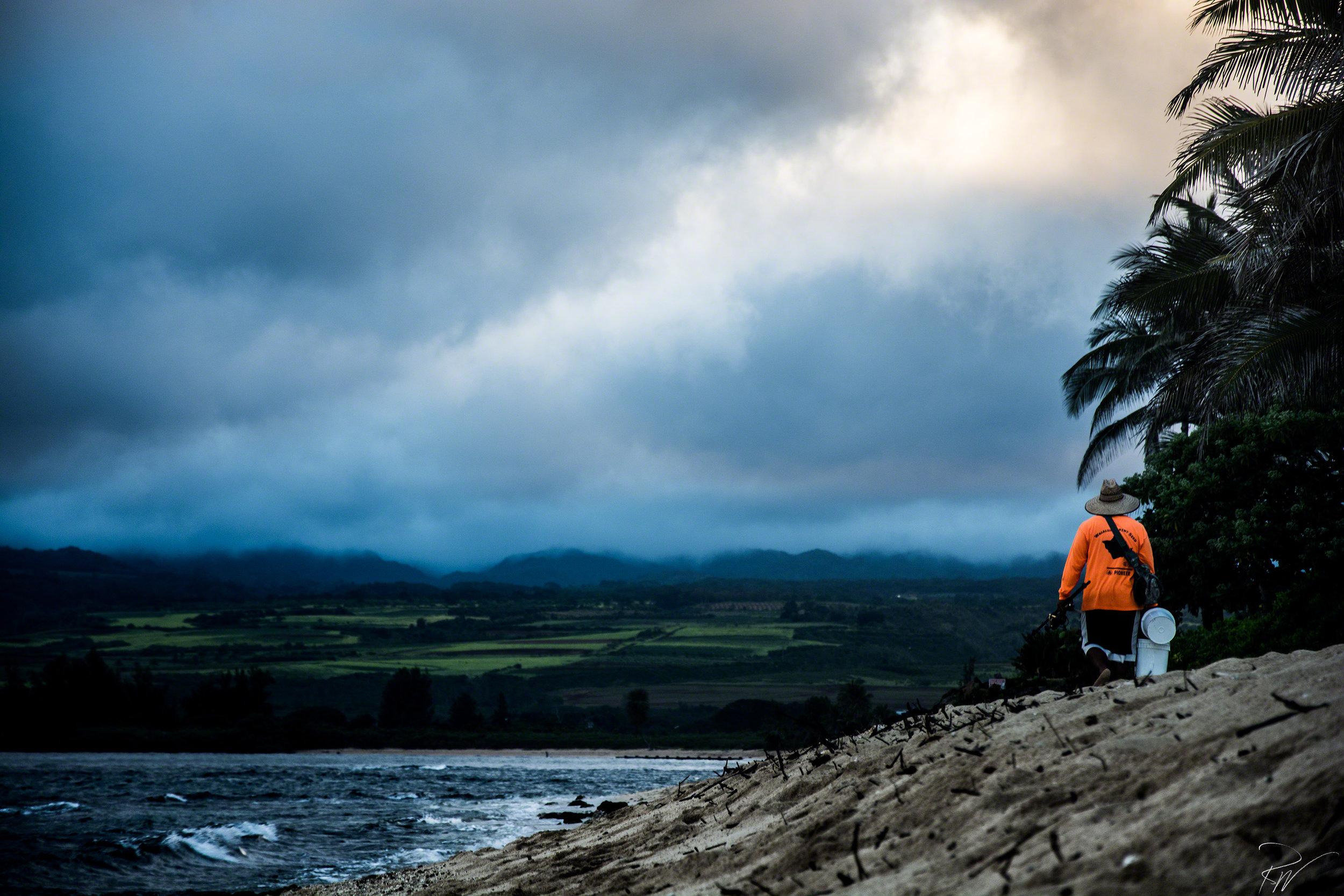 Hawaii-2016-9572-website.jpg