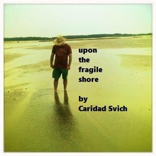Fragile Shore.jpg