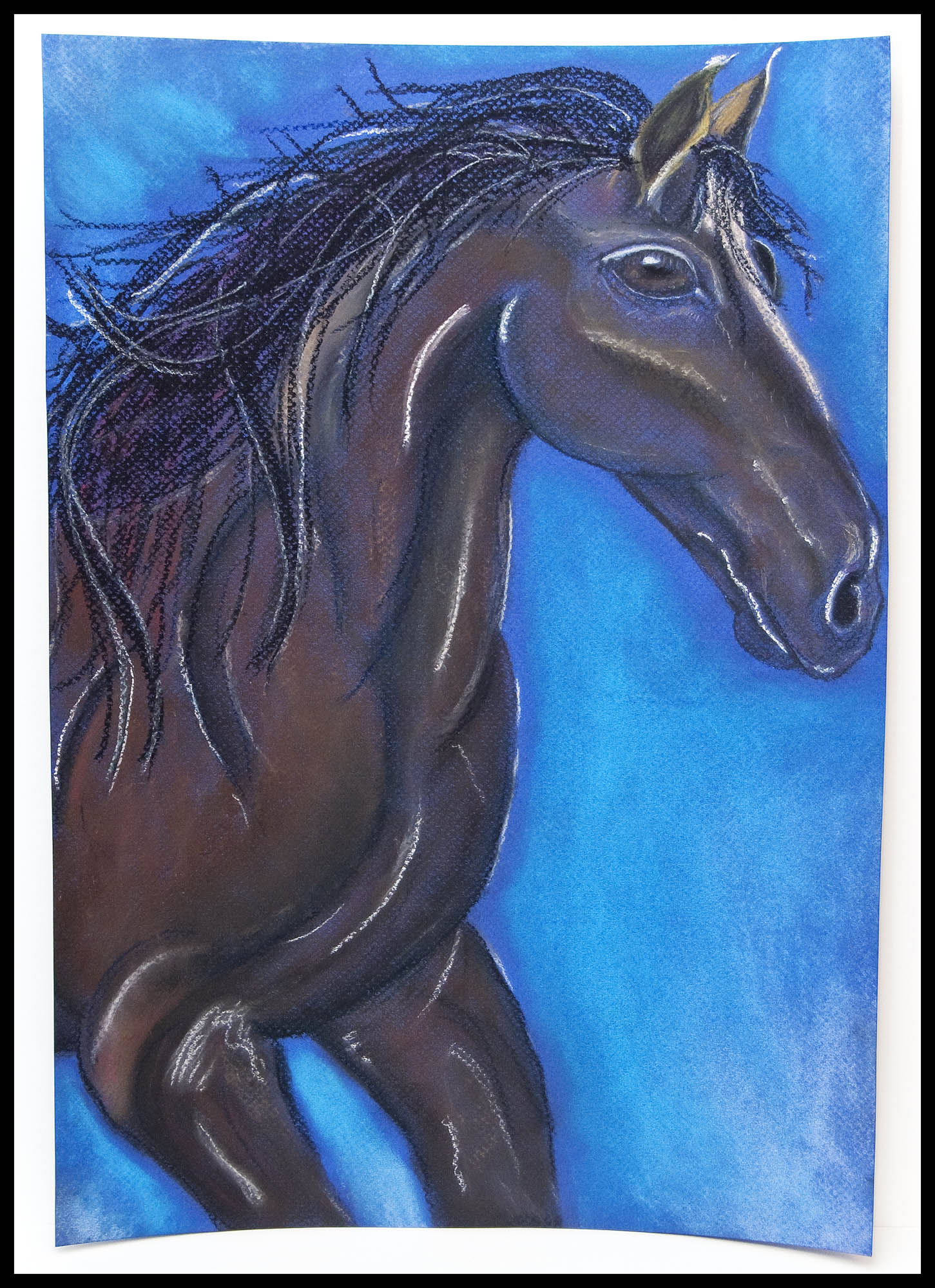 Scarlet's pastel painting of a horse