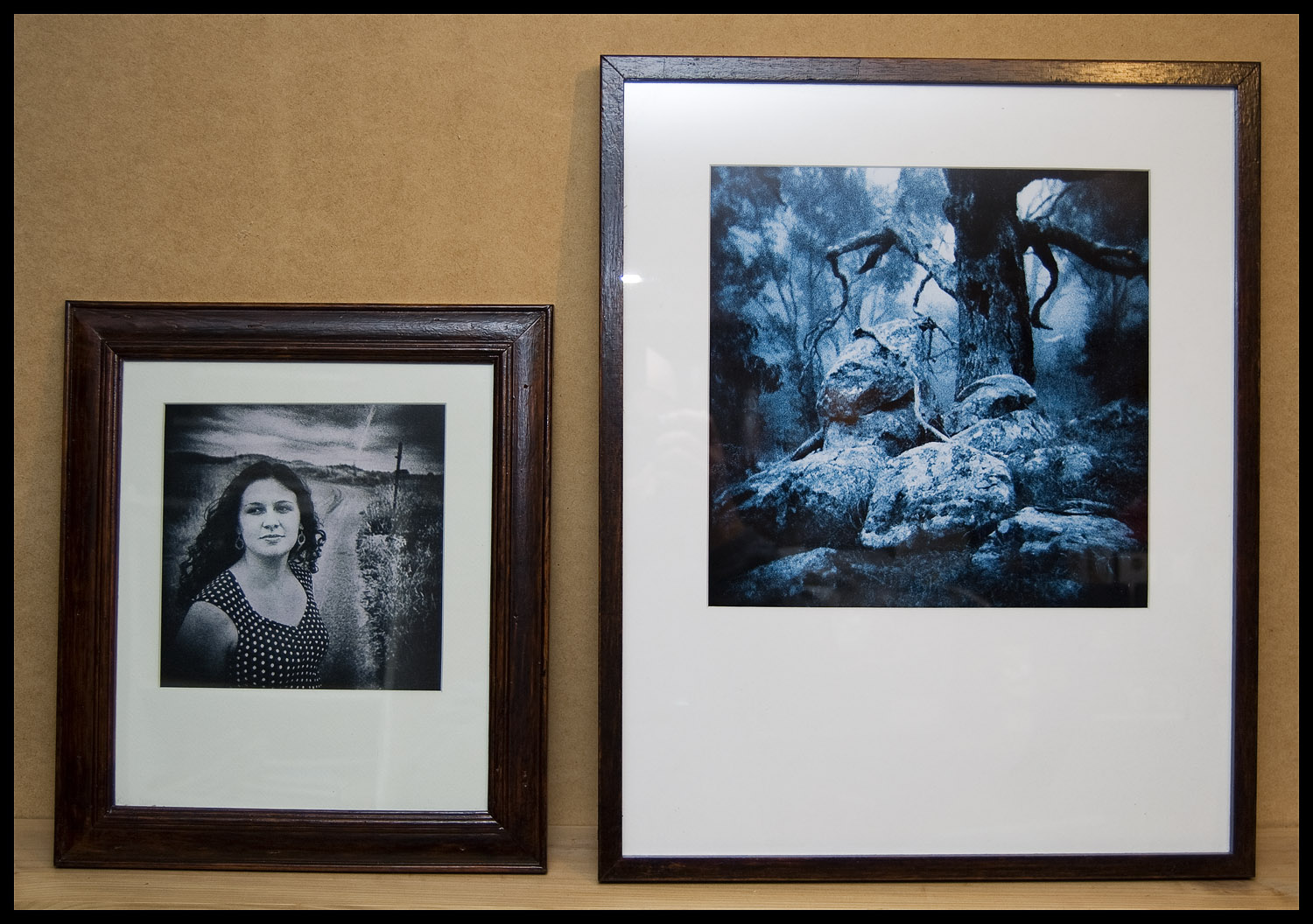 Steve's renovated frames and framed prints