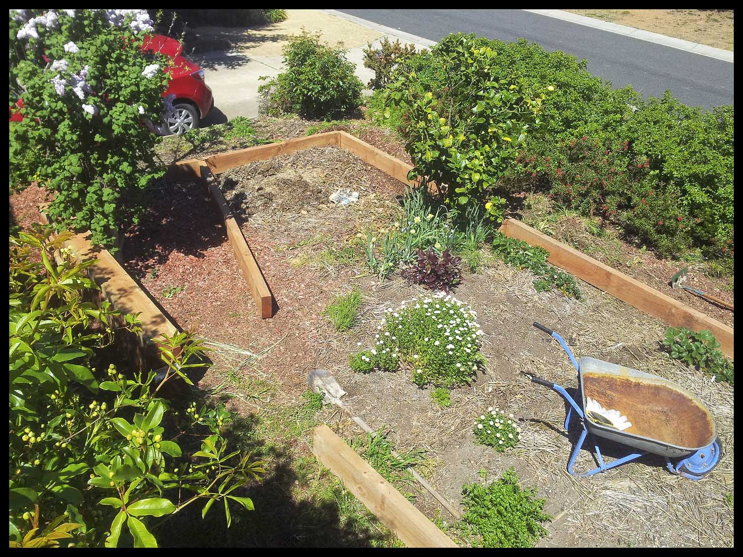 Our new, expanded front garden bed.