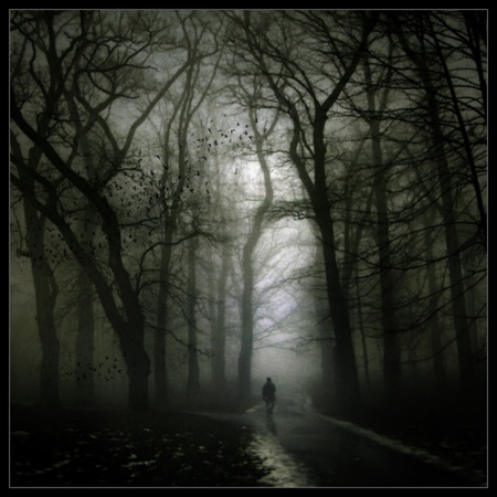 """""""I took the road less traveled, and now I'm fucking lost."""""""