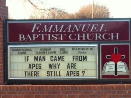 And let's be honest. What's more fun than evolving animals on the grounds of a southern church?