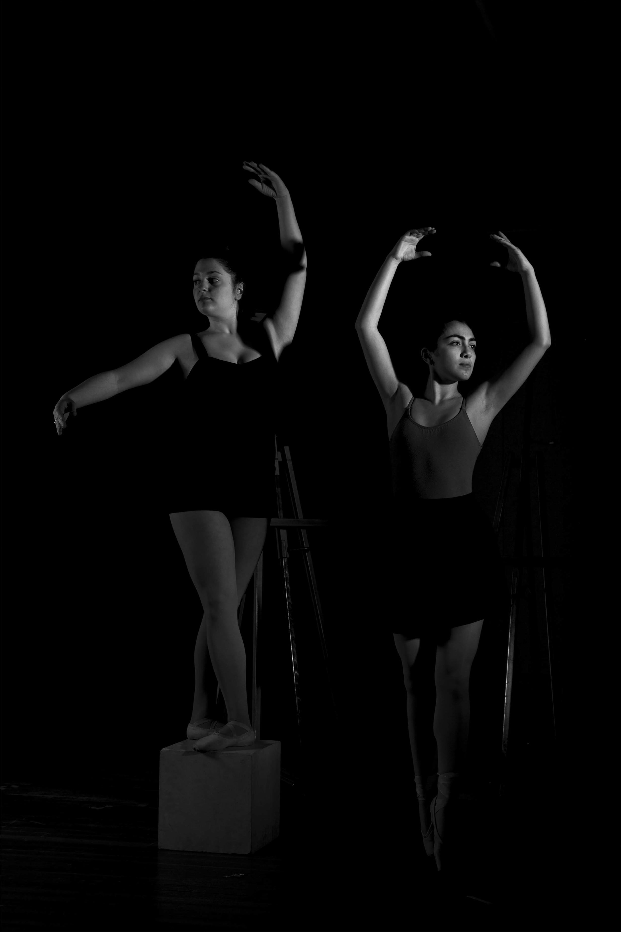 Dana Mancini and Pilar Marin (2014)