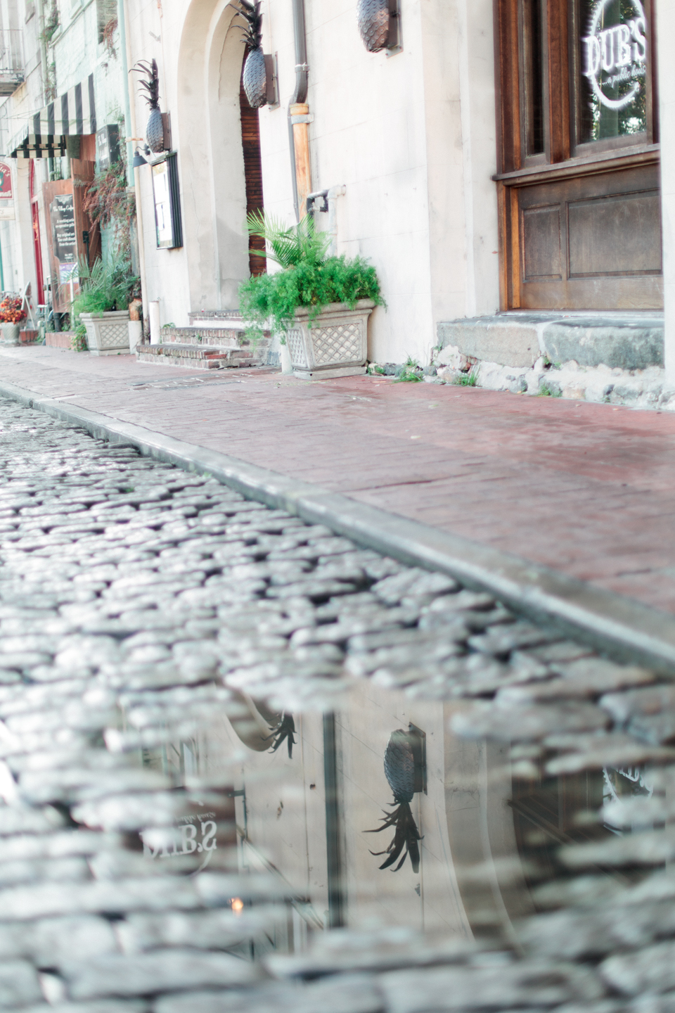 Image of a cobblestone street with a puddle of water on East River Street in historic downtown Savannah, Georgia.