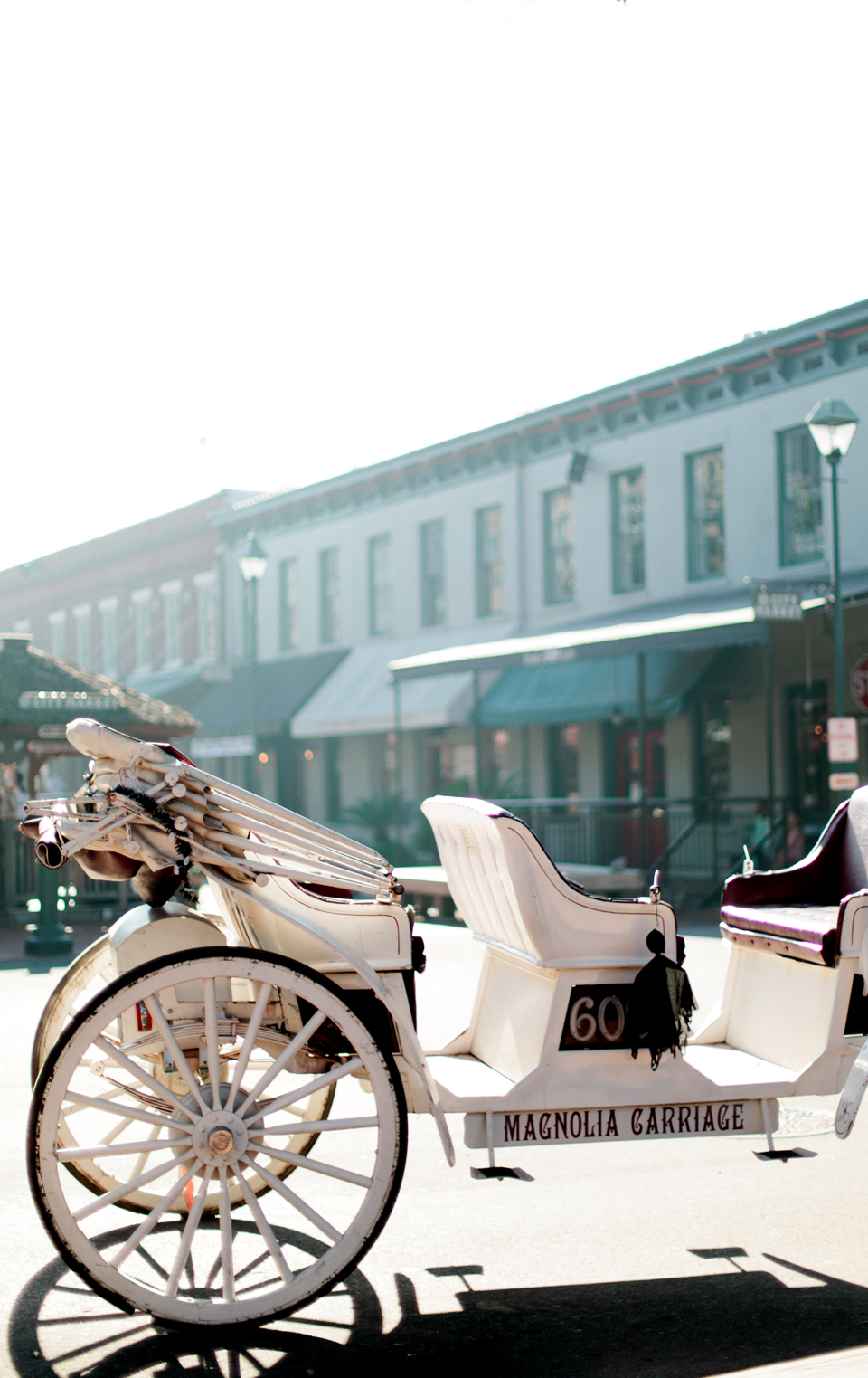 Image of downtown historic Savannah, Georgia.  This is a horse drawn carriage for local tours.