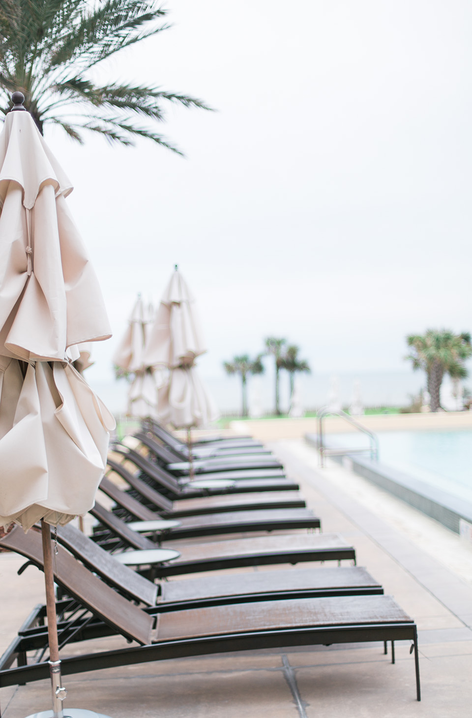 This is a picture of lounge chairs lined up in a row on a pool deck at the Omni Amelia Island Plantation Resort.