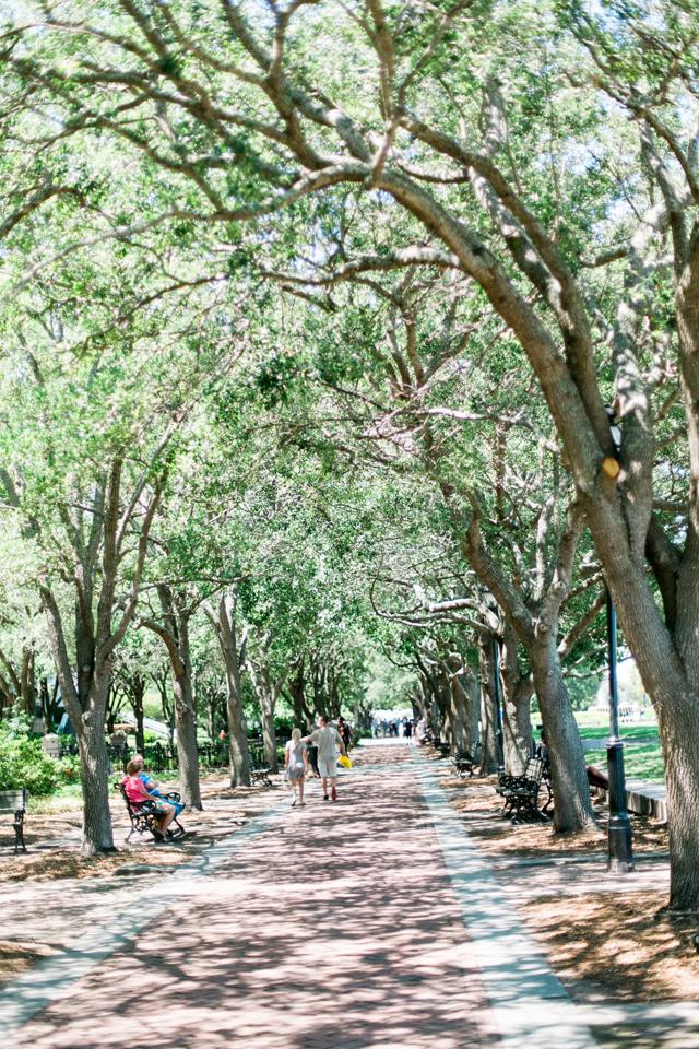 Waterfront Park in historic Charleston, South Carolina