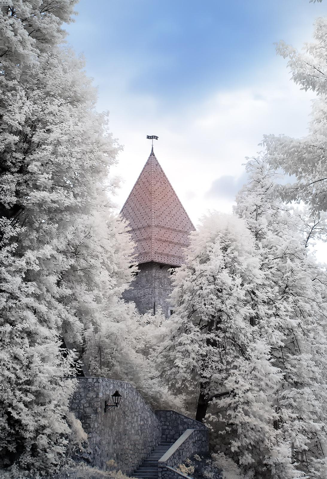 Watch Tower in Kranj