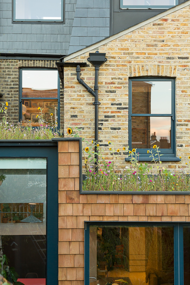 The rear extension with a huge glass door and a wildflower roof