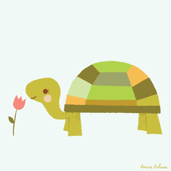 turtle_deniseholmes