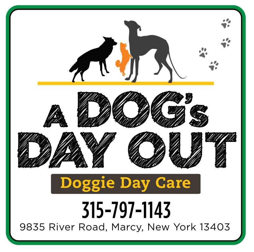 A-Dogs-Day-Out.jpg
