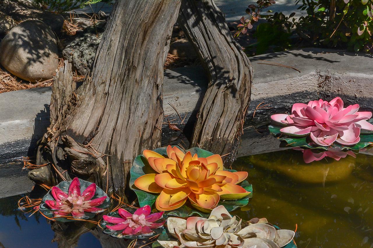 Fake water lilies