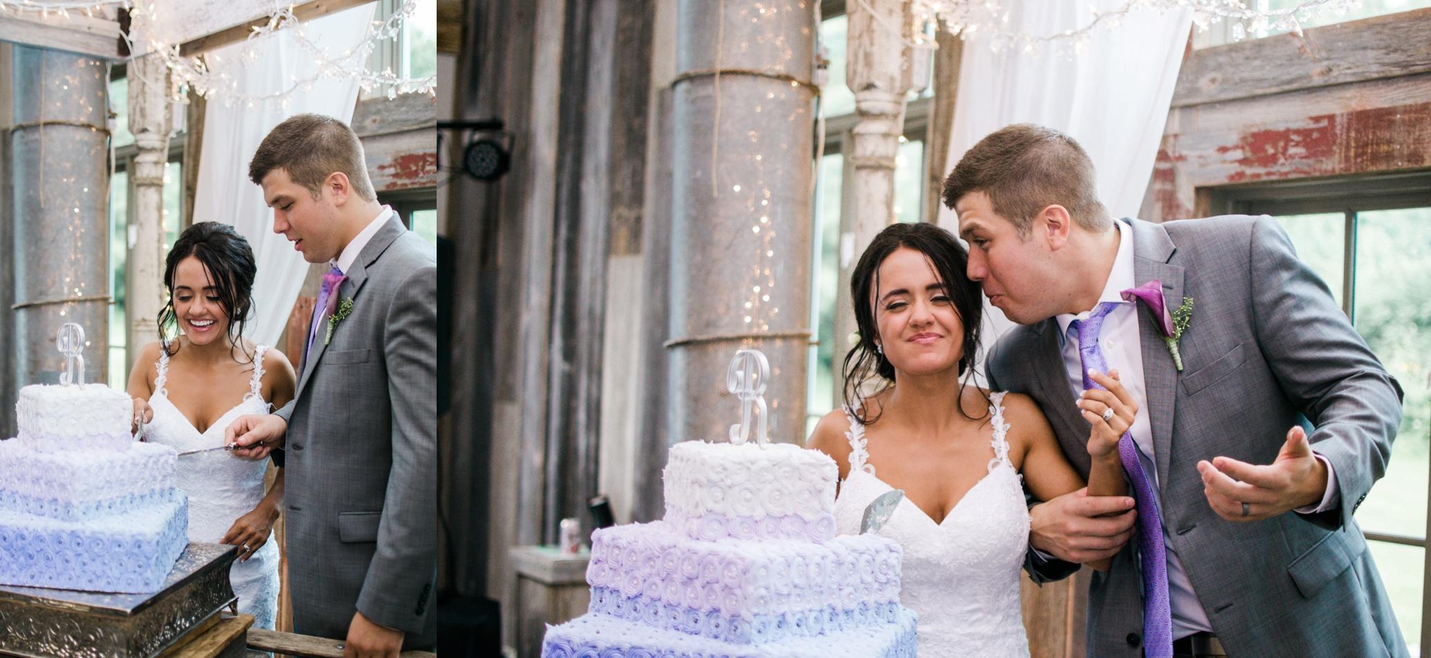 Barnes' Place Rustic Outdoor Wedding | Ali Leigh Photo Minneapolis Wedding Photographer_0165.jpg